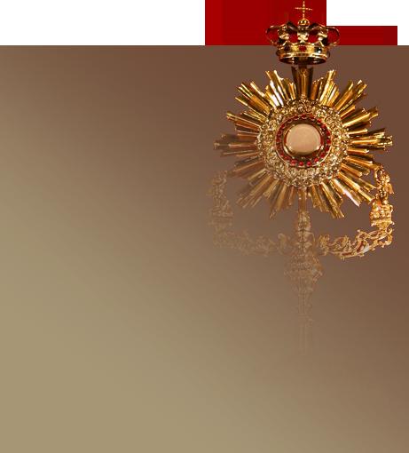 Święty Franciszek - dowiedz się więcej